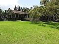 Starr-120510-5683-Cinnamomum camphora-habit in yard-Ka Hale Olinda-Maui (25024162852).jpg