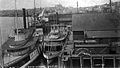 Steamboats at Seattle, June 1891.jpg