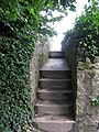 Steps to the beach on Helford River from Trebah Valley - geograph.org.uk - 1476947.jpg