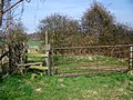 Stile and gate, Blackbush Down - geograph.org.uk - 1210075.jpg