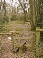 Stile by Mountnoddy Wood - geograph.org.uk - 1752398.jpg