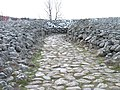 Stone Age Tomb (1).jpg