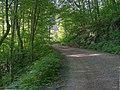 Stoney Fork Rd, Barnardsville, NC - panoramio.jpg