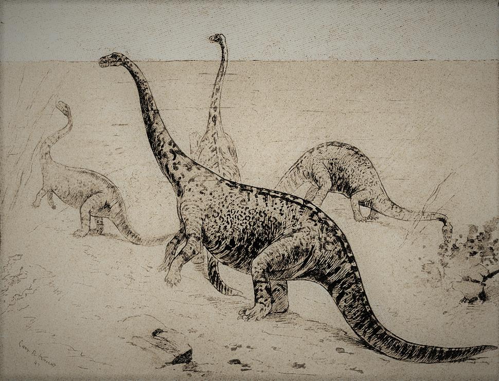 Strange Creatures of the Past - The Amphibious Dinosaur