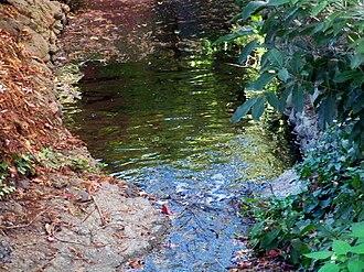 Strawberry Creek - Image: Strawberry Creek 4