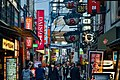 Street In Old Town Osaka (254929913).jpeg