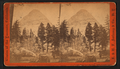 Sugar Loaf Mountain. Little Yosemite Valley, by E. & H.T. Anthony (Firm).png
