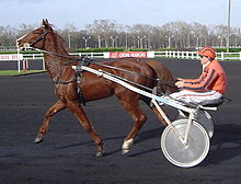 Sulky racing Vincennes DSC03735 cropped.JPG