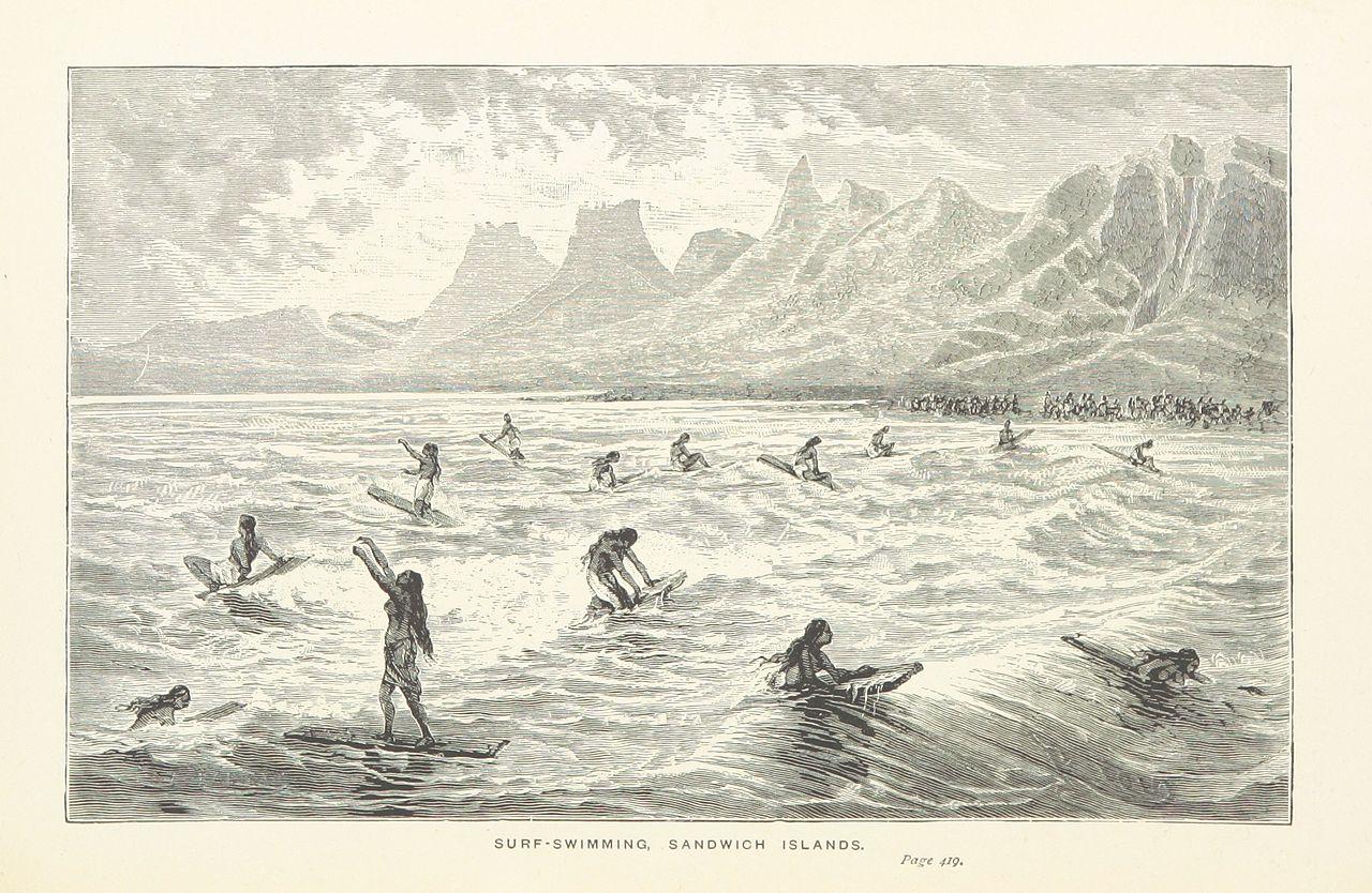 Illustration Surf Swimming Sandwich Islands Hawaii