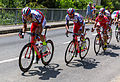 TDF 2015, étape 13, Montgiscard (3053).jpg