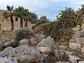 Tal-Qadi Temple, Naxxar 26.jpg