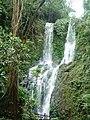 Tamaraw Water Falls.jpg