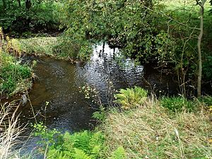 Luggie Water - the Luggie (left) and Cameron Burn (from the right) meet next to the bridge at Glenhove
