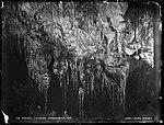 The Oddities, J. Caves, Yarrangobilly (4903270457).jpg