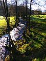 The River Enz In November - panoramio.jpg