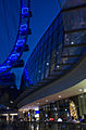 The Singapore Flyer - Now open (2318630231).jpg