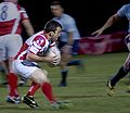 The rugby player - panoramio.jpg
