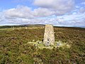 The trig point on Cooms Fell - geograph.org.uk - 552854.jpg