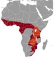 Thryonomys range map.png