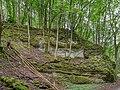Tiefenstürmig Felsen-20200607-RM-160726.jpg