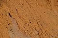 Timna valley 16583 (11962924993).jpg