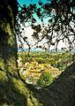 Torre Guinigi Lucca view 2015.jpg