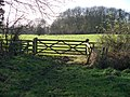 Towards where the paths cross - geograph.org.uk - 1618085.jpg
