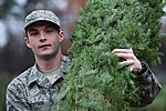 Trees for Troops, The SPIRIT of giving 161205-F-GX122-027.jpg
