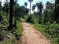 Trilha Serra do Cipó - panoramio.jpg