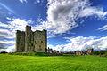 Trim Castle (1130268262).jpg