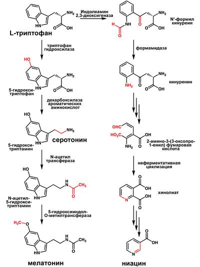 таблетки от холестерина липримар