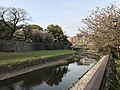 Tsuboigawa River and Long Wall of Kumamoto Castle 4.jpg