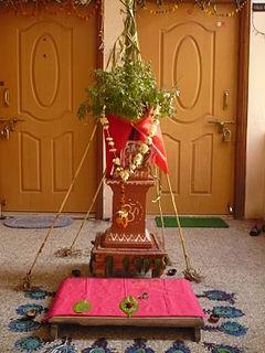 Tulsi Vivah ceremonial marriage of the Tulsi plant (holy basil) to the Hindu god Vishnu or Krishna
