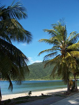 Henri Pittier National Park - Turiamo beach, located in the coastal zone of Henri Pittier National Park.