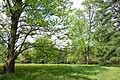 Tyler Arboretum - DSC01818.JPG