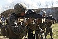 U.S. & Romanian Forces Conduct Bilateral Training 150226-M-XZ244-475.jpg