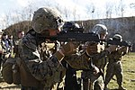 U.S. & Romanian Forces Conduct Bilateral Training 150226-M-XZ244-475.jpg