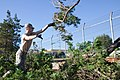 U.S. Air Force Airman Andrew Wilson, assigned to the 374th Civil Engineer Squadron, clears fallen trees during clean up operations following Typhoon Roke at Yokota Air Base, Japan, Sept 110922-F-PM645-012.jpg