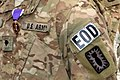 U.S. Army explosive ordnance disposal technicians with the 731st Ordnance Company receive the Purple Heart for wounds received in combat during a ceremony at Bagram Airfield, Afghanistan, Dec. 7, 2013 131207-D-ZQ898-001.jpg