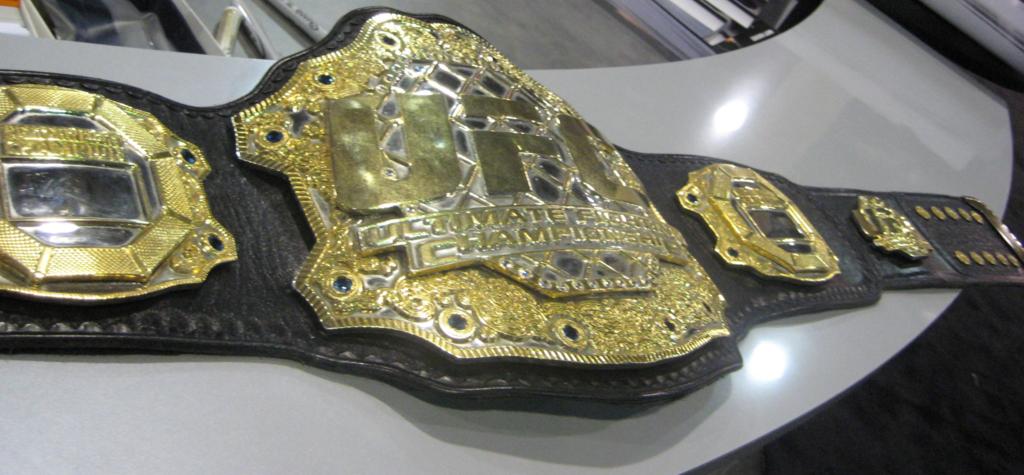 Шампионски двубои до края на 2013-та в UFC