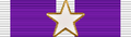 USA - TX Purple Heart Ribbon.png