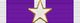 USA - TX Purple Heart Ribbon.png