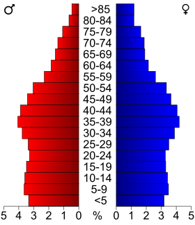 USA New York age pyramid.svg