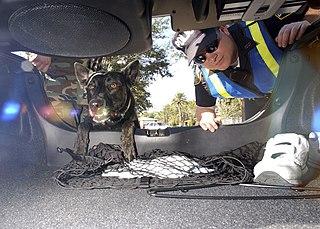 Under vehicle inspection