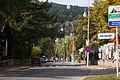 Uklad urbanistyczny Krynica ffolas 01.jpg