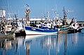 Un chalutier de pêche côtière (12).jpg
