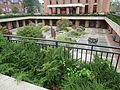 University of Massachusetts at Amherst courtyard near DuBois library.JPG