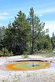Upper Geyser Basin Yellowstone 21.JPG
