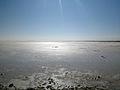Urmia Lake by Yoosef Pooranvari.jpg