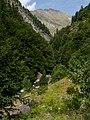 Valle de Ordiso - WLE Spain 2015 (12).jpg